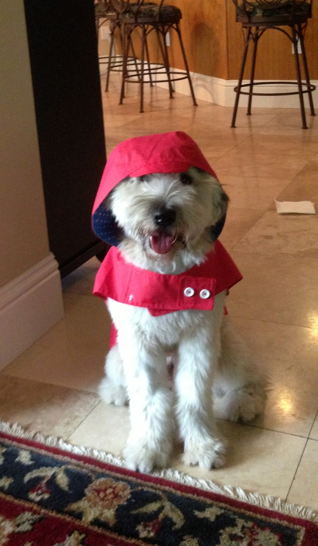 Finn Raincoat
